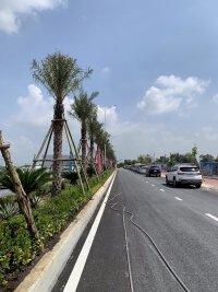 Đất dự án Garden Riverside Thủ Thừa Long An