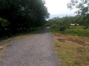 đất vườn 21m x 118m đường nhựa Đào Thị Thơm thuộc xã An Nhơn Tây