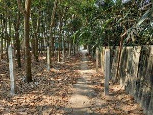 Đất 5,6m x 27m ,nở hậu 9,6m đường đất xã Phú hòa đông